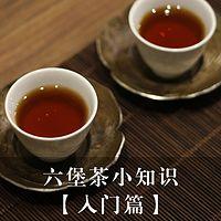 六堡茶小知识【入门篇】