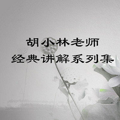 胡小林老师经典讲解系列集