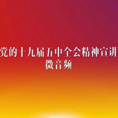 党的十九届五中全会精神宣讲微音频