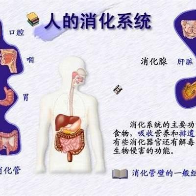 消化系统药物科普
