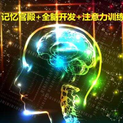记忆宫殿+全脑开发+注意力训练