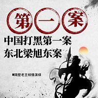 中国打黑第一案东北梁旭东案