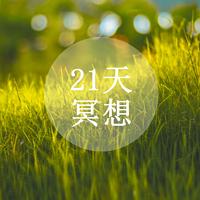 21天冥想