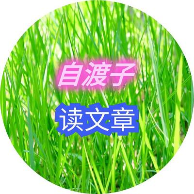 8-自渡子读文章_自渡子_礼堂版