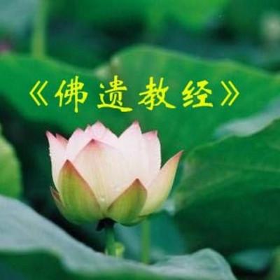《佛遗教经》—净界法师