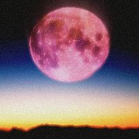 Pink Moon on