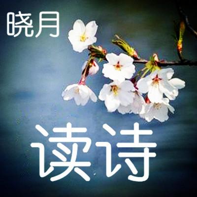 【晓月读诗】诗歌词