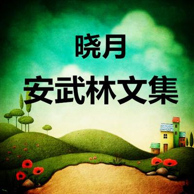 晓月读《安武林文集》