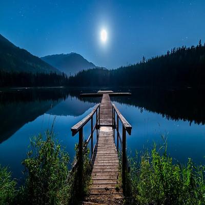 【守望之声】月下瞭望