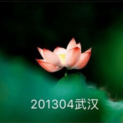 201304武汉
