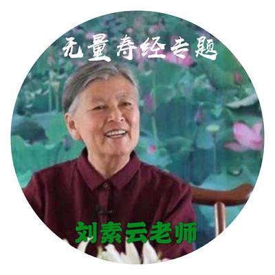 刘素云老师2019无量寿经专题演讲