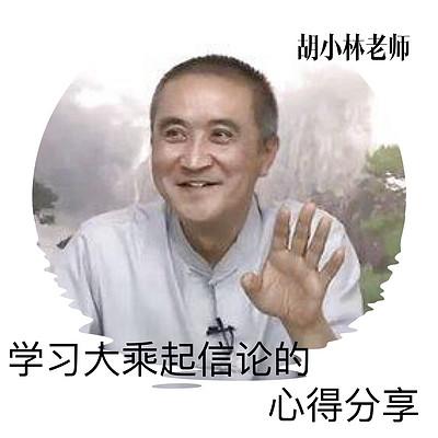 学习《大乘起信论》的心得分享~胡小林老师