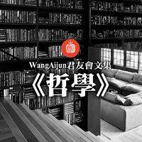 WangAijun君友会文集《哲学》