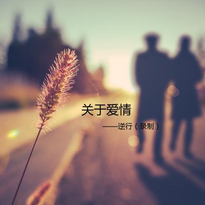 关于爱情-逆行(录制)
