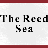 The Reed Sea