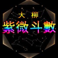 大柳紫微斗数-系统理论课