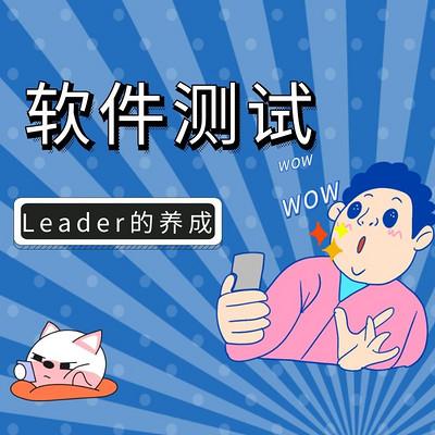 【软件测试】企业中Leader的养成