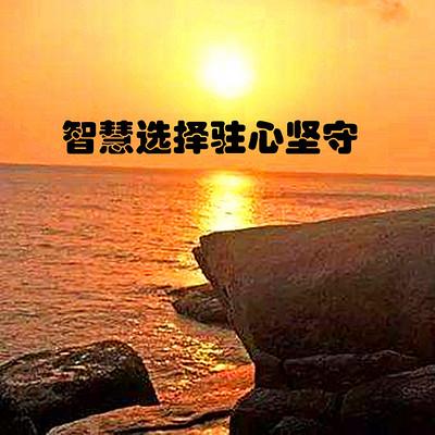 王鹏睿丨智慧选择驻心坚守