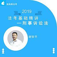 2019法考基础精讲刑诉法谢安平