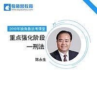 2019法考重点强化刑法陈永生