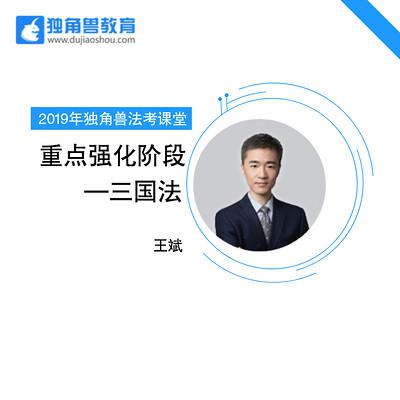 2019法考重点强化三国法王斌