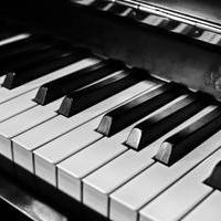 钢琴|在旋律中沉浸