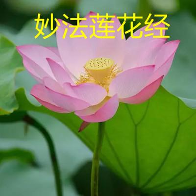 妙法莲花经