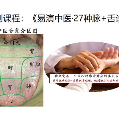 中医27种脉诊+舌诊