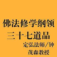 三十七道品研習報告 定弘法师/钟茂森教授