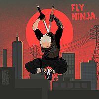 飞天忍者Fly Ninja:忍