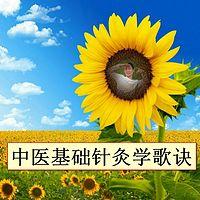 中医基础针灸学歌诀