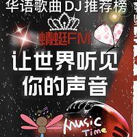 华语歌曲DJ推荐榜