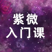果果星斗紫微入门课