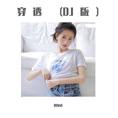 刘汉成:穿透(DJ版)