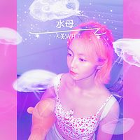 大美WH:水母