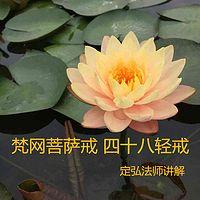 梵网菩萨戒 四十八轻戒--定弘法师讲解