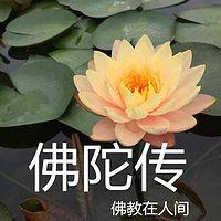 佛陀传-佛教在人间