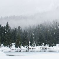 暖冬 · 万物声精选白噪音专辑