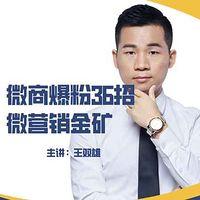 《微商爆粉36招 微营销金矿》