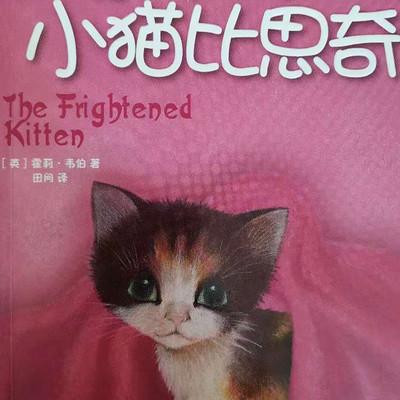 上学路上的故事丨受惊吓的小猫比思奇
