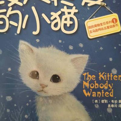 上学路上的故事丨没人疼爱的小猫