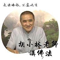 胡小林老师讲佛法