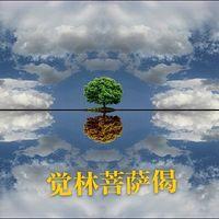 觉林菩萨偈
