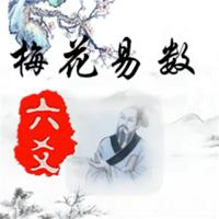 梅花与六爻初级课程