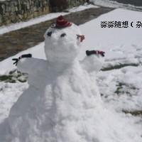 淼淼随想 (杂书,碎碎念)