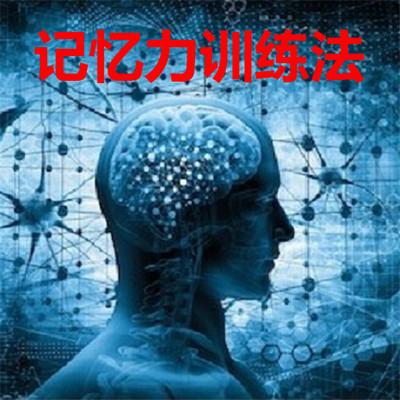记忆力训练法+高效学习法