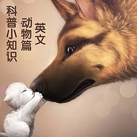 【科普小知识】 英文版 | 动物篇