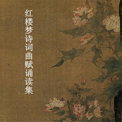 红楼梦诗词曲赋诵读集-陈喆