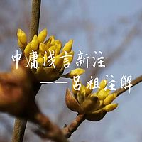 中庸浅言新注(吕祖)