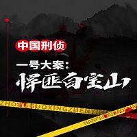 中国刑侦一号案:悍匪白宝山